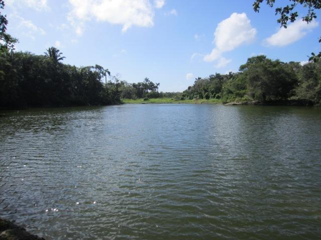pond in Belize